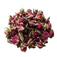 Роза пномпенская (бутоны)