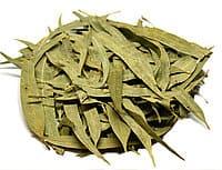 Евкаліпт (листя)